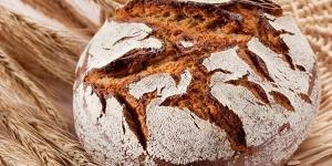 Imagen de CETECE descubre todas las posibilidades de la masa madre de cultivo de trigo