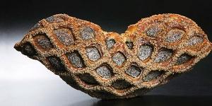 Imagen de Pan enrejado con harina de molino de piedra de Josep Pascual