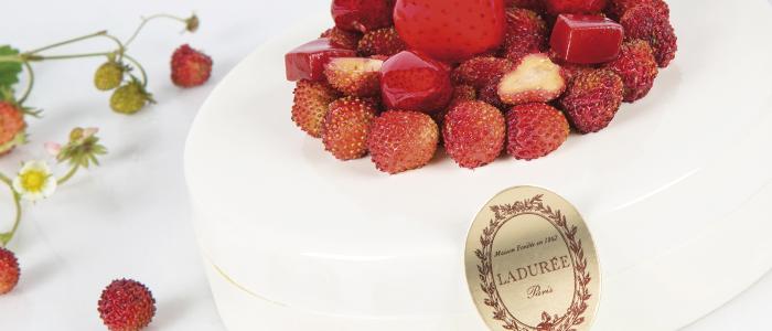 Tarta La Délice de Claire Heitzler, Maison Ladurée