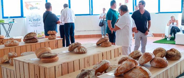 Cata de panes en la edición de la miga de oro de Canarias