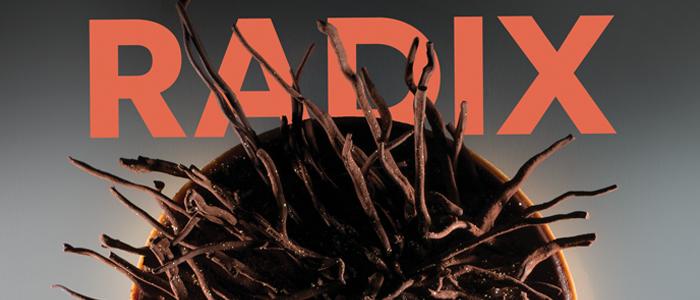 POrtada de Radix, nuevo libro de Paco Torreblanca
