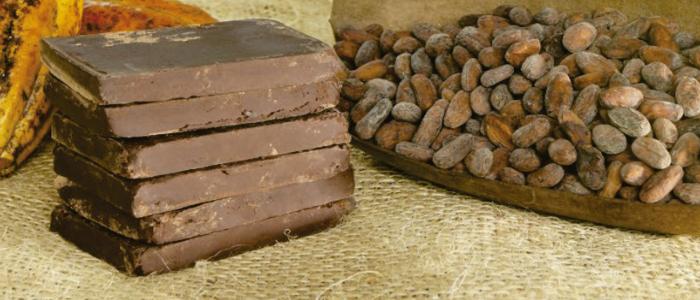 Piezas de cacao y chocolate