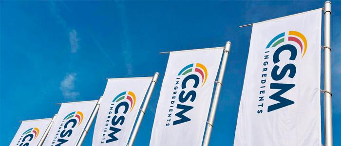 Banderas de CSM