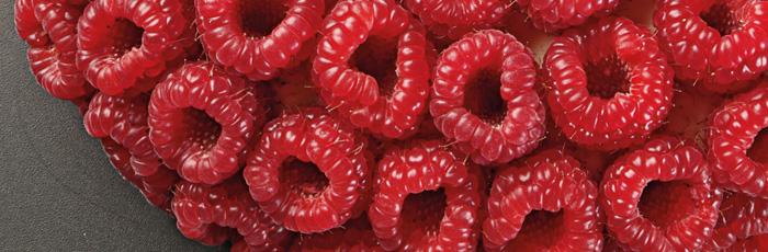 Las frutas ganan protagonismo, la pastelería de Florent Margaillan