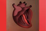 Corazón de chocolate de Enric Monzonis