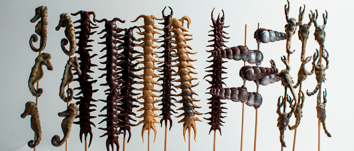 Brochetas de insectos de Jordi Farrés