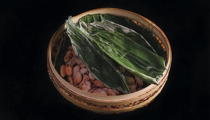 Fermentación con hojas de banana