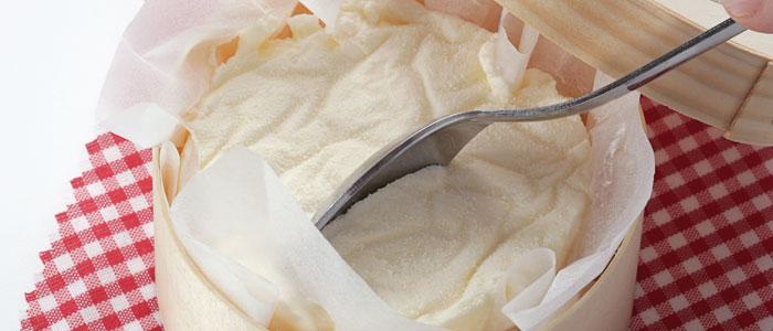 Cheesecake Hofmann