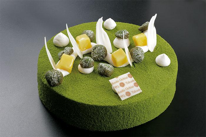mangocha tarta