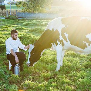 Jonathan González con vacas