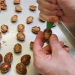 Rellenando los huevos de nougatine con praliné