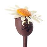 La simpática alusión primaveral de la Maison du Chocolat, foto Caroline Faccioli