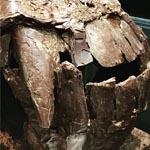 Una de las últimas esculturas presentadas por el chef chocolatero