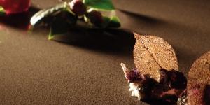 Imagen de 10 postres para hacer avanzar la cocina dulce