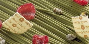 Imagen de 10 postres rojos, refrescantes y naturales