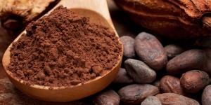 Imagen de El cacao natural ayuda a reducir la incidencia de enfermedades crónicas