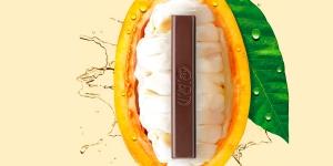 Imagen de Nestlé crea el primer chocolate negro 70% elaborado solo con el fruto del cacao