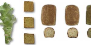 Imagen de Pan con brócoli, una fórmula nutritiva para reducir el desperdicio alimentario