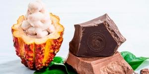 Imagen de Barry Callebaut lanza un chocolate hecho 100% con fruto del cacao