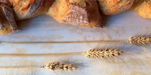 Imagen de Desmontando seis mitos sobre el pan